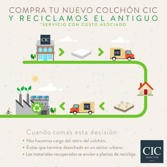 Cama Europea Curve 2 Plazas Cocopedic + Almohadas + Plumón + Sábanas
